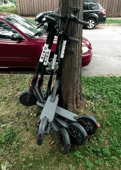 Bird Charger And Lime Juicer Side Hustling As An Electric Scooter