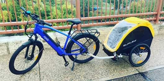 espin bikes burley