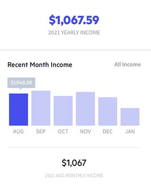 Lili Income And Expense Tracking