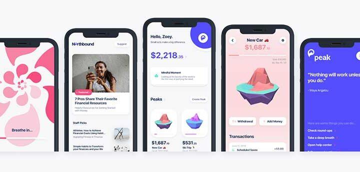 peak money app review